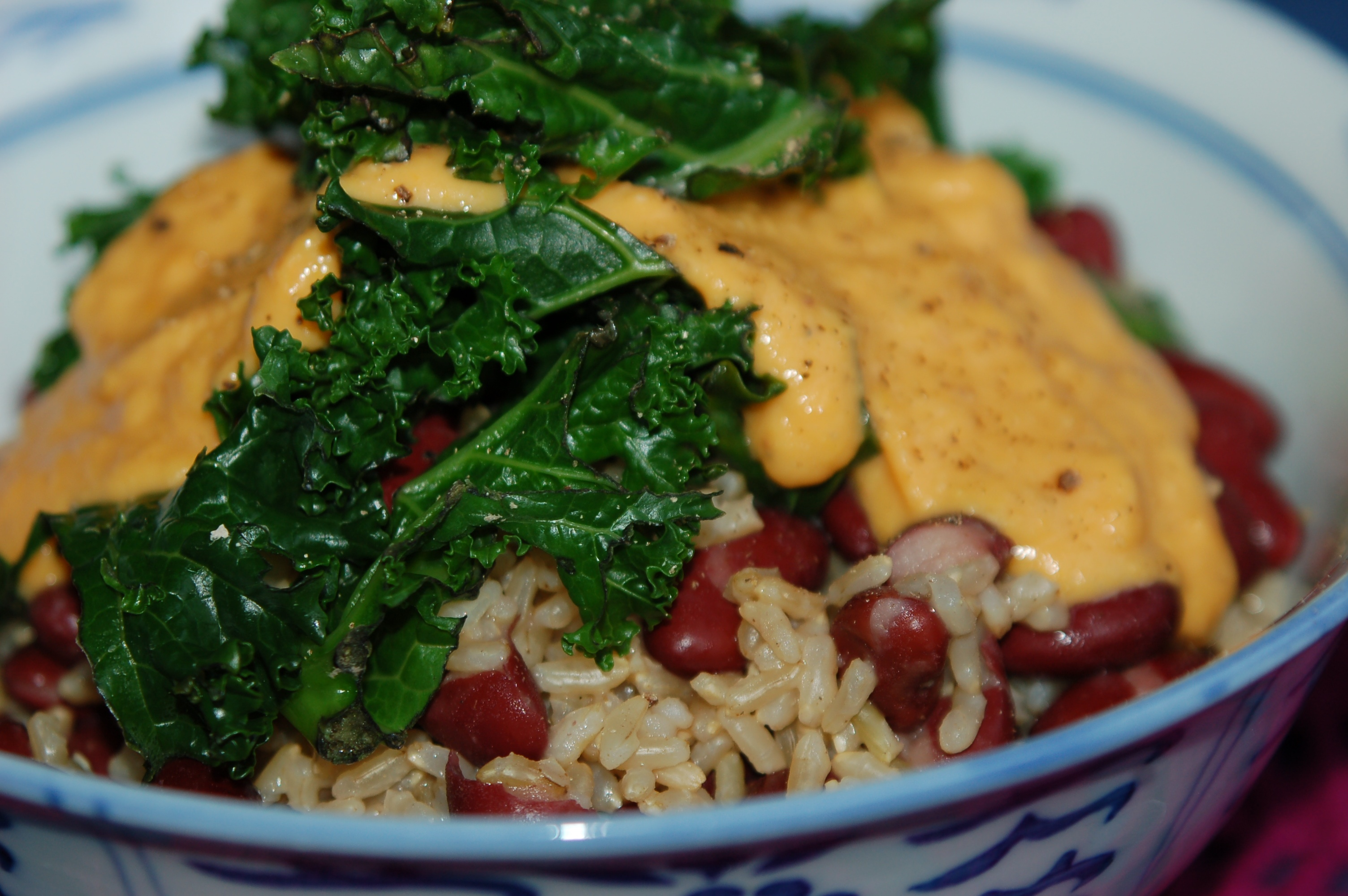 rice_and_beans_3_3008